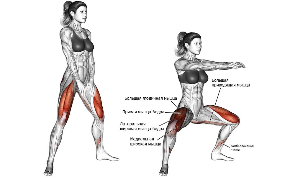 Плие - какие мышцы задействованы